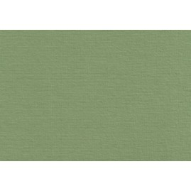 Jersey-Fix Farbe Olive